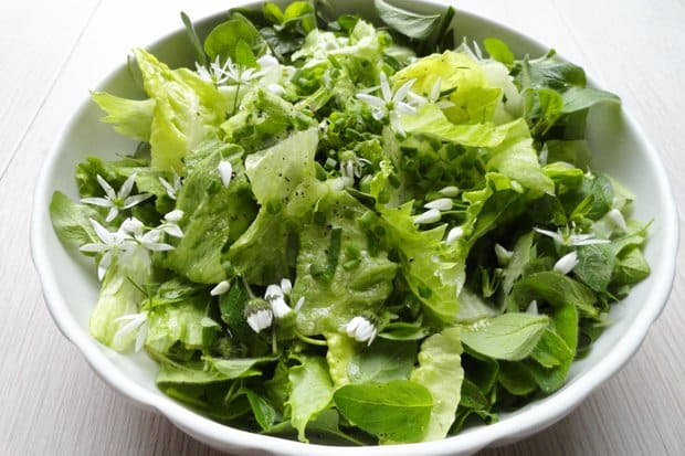 salad for cleansed organism